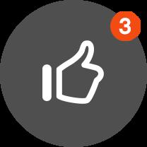 Günstiger WordPress Support